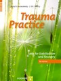 Trauma Practice - Tools for Stabilization and Recovery